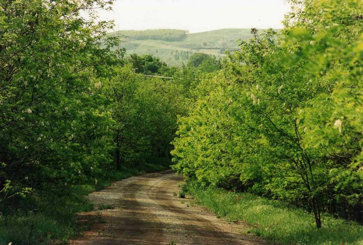 Ξεμπλοκάρει το ζήτημα της εκμίσθωσης αγροτεμαχίων από τη ΔΕΗ  στους αγρότες της περιοχής