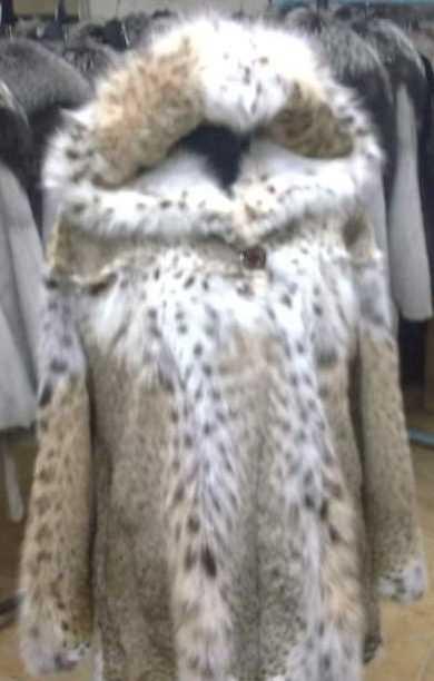 674 γούνινα παλτά αξίας -1.870.000- ευρώ αφαίρεσαν από επιχείρηση γουναρικών στην Καστοριά, εγκληματική οργάνωση αποτελούμενης από (9) αλλοδαπούς