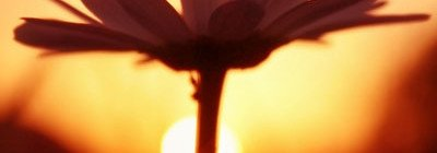 Αποδοχή νόθων δογμάτων με πρόσχημα την αγάπη  ''Ἀνάγκη πυκτεύειν καί μάχεσθαι'' (Αγ. Ι. Χρυσόστομος).  Γράφει ο Φώτης Μιχαήλ, ιατρός