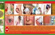 ΔΕΝΔΡΟΛΙΒΑΝΟ (Rosmarinus officinalis) Kαλλιέργεια και ιατροφαρμακευτικές ιδιότητες (Σταύρου Π. Καπλάνογλου- Γεωπόνου)