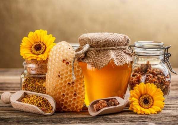 Τρία στα τέσσερα μέλια σε όλο τον κόσμο περιέχουν νεοκοτινοειδή φυτοφάρμακα