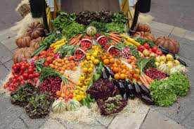 Σκληρή κριτική στην Κυβέρνηση και το ΥπΑΑΤ του βουλευτή Κοζάνης Γιώργου Κασαπίδη για την τραγική κατάσταση που επικρατεί στην αγορά των ζωοκομικών προϊόντων