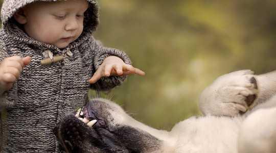 Μωρά και κατοικίδια: Μύθοι και αλήθειες