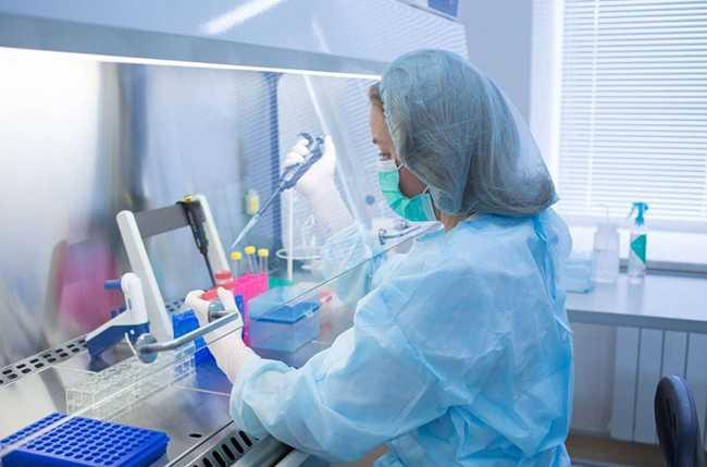 Δημιουργήθηκαν τα πρώτα ανθρώπινα ωάρια σε εργαστήριο