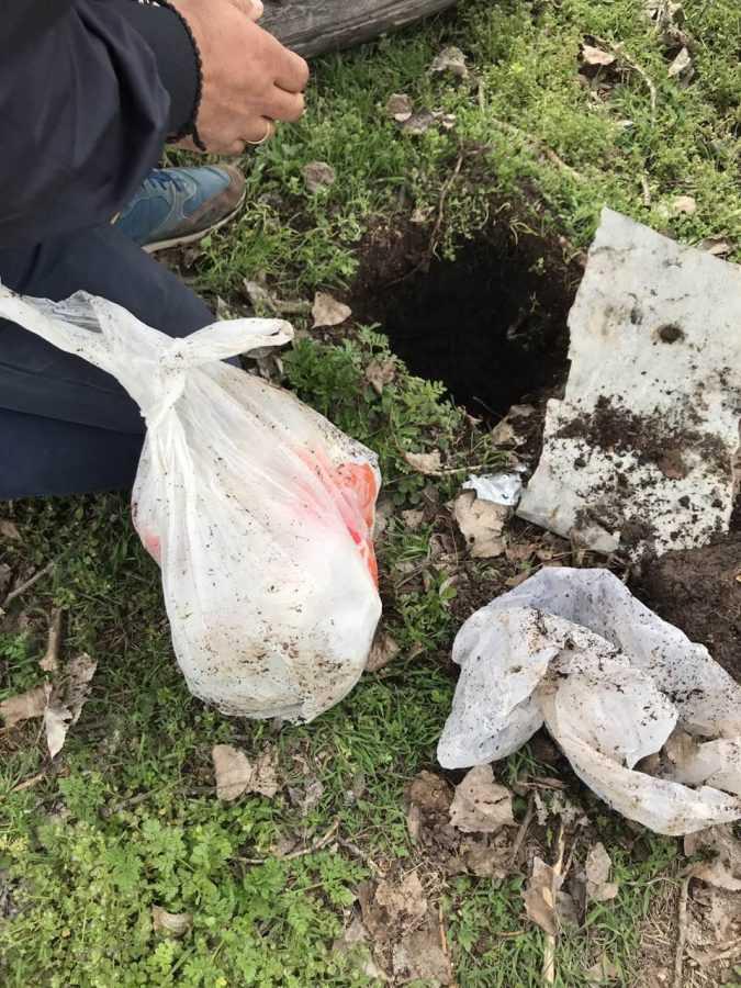 Έκρυψε το χασίς δια της μεθόδου.....του αρουραίου 49χρονος στην Πτολεμαϊδα. Συνελήφθη με άλλους 2 για κατοχή και διακίνηση ναρκωτικών ουσιών