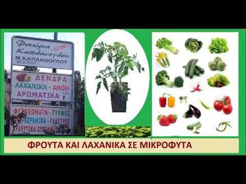 ΤΙ ΠΟΙΚΙΛΙΕΣ ΦΡΟΥΤΩΝ ΚΑΙ ΛΑΧΑΝΙΚΩΝ ΝΑ ΦΥΤΕΥΣΕΤΕ ΣΤΟΝ ΚΗΠΟ ΣΑΣ. Συνιστώμενες ποικιλίες φρούτων και λαχανικών για φύτευση στην Δ Μακεδονία (ΜΑΡΘΑ ΣΤ. ΚΑΠΛΑΝΟΓΛΟΥ)