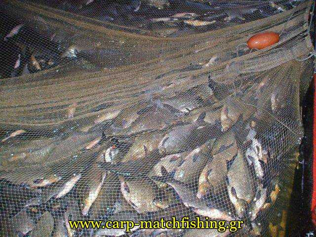 18η Τριήμερη Γιορτή Καστοριανού Ψαριού στο Απόζαρι