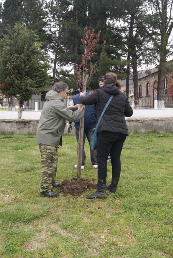 475 νέα δενδρύλλια φυτεύτηκαν στα Κοίλα στο πλαίσιο  εθελοντικής δεντροφύτευσης