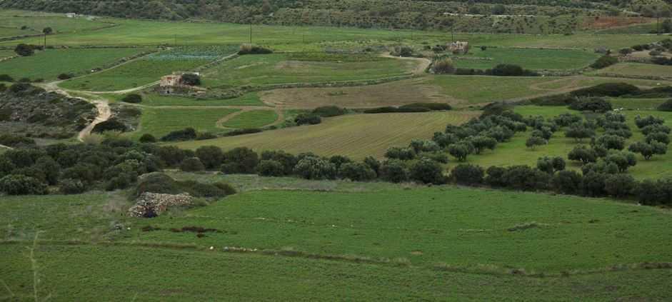 Καθορίστηκε το πλαίσιο εκμίσθωσης αγροτεμαχίων σε αποκατεστημένες εκτάσεις των ορυχείων