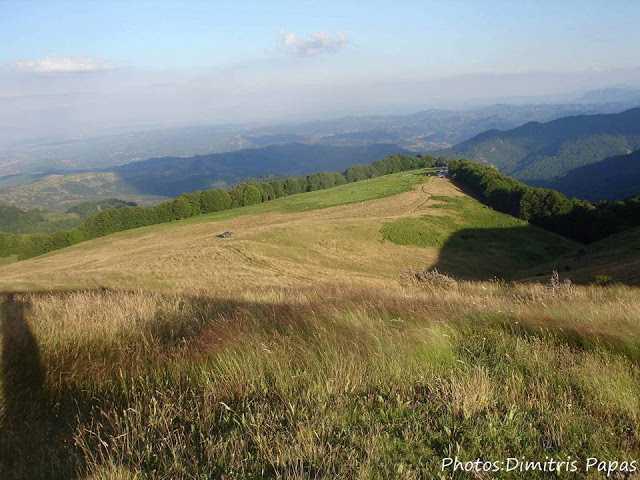 15η Γιορτή Βουνού Στο Παλιοκριμίνι Βοΐου(30 Ιουλίου στις 12 μ.μ. μέχρι 31 Ιουλίου στις 6 μ.μ.)