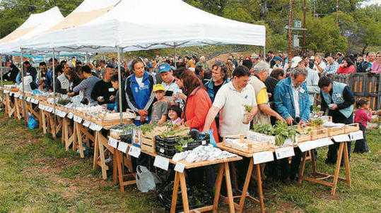 Πού μπορείτε να βρείτε δωρεάν σπόρους ντόπιων παραδοσιακών ποικιλιών (ΛΙΣΤΑ)