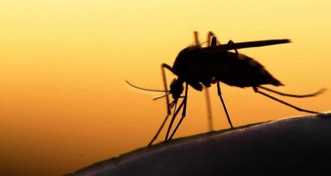 ΑΠΟΚΛΕΙΣΤΙΚΟ: Κρούσμα ελονοσίας σε μετανάστη στην Θεσσαλονίκη