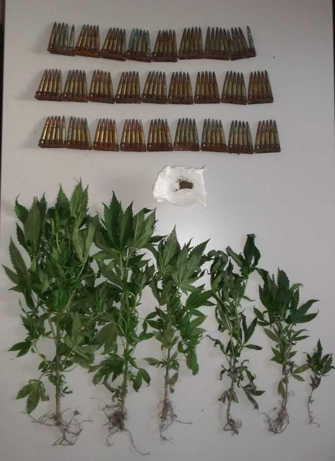 Σύλληψη 45χρονου ημεδαπού σε περιοχή των Γρεβενών για παραβάσεις των νόμων περί ναρκωτικών και περί όπλων