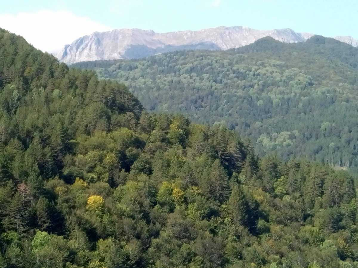 Ημερίδα για το φυσικό περιβάλλον του Γράμμου  στο Πάρκο Εθνικής  Συμφιλίωσης  την Κυριακή 17 Σεπτεμβρίου