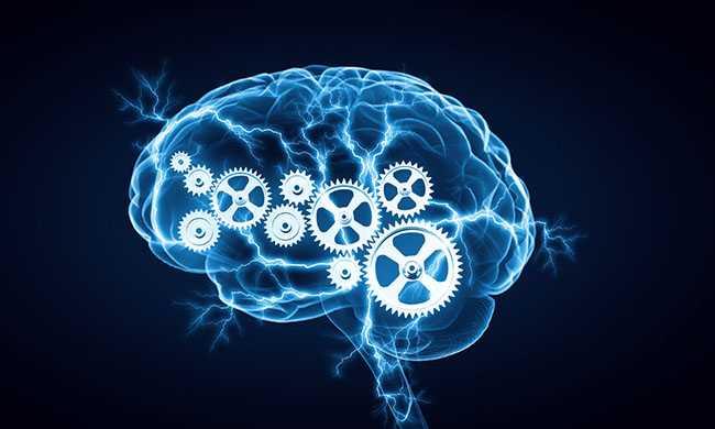 Επτά βήματα για υγιή εγκέφαλο από την παιδική ηλικία ως τα γηρατιά
