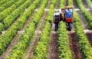 Βελτίωση της ανταγωνιστικότητας των ελληνικών γεωργικών προϊόντων με την αξιοποίηση των συστημάτων ποιότητας με πρόγραμμα Αγροτικής Ανάπτυξης
