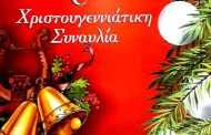 χριστουγεννιάτικη Συναυλία από το Δημοτικό Ωδείο Σερβίων το Σάββατο 16/12