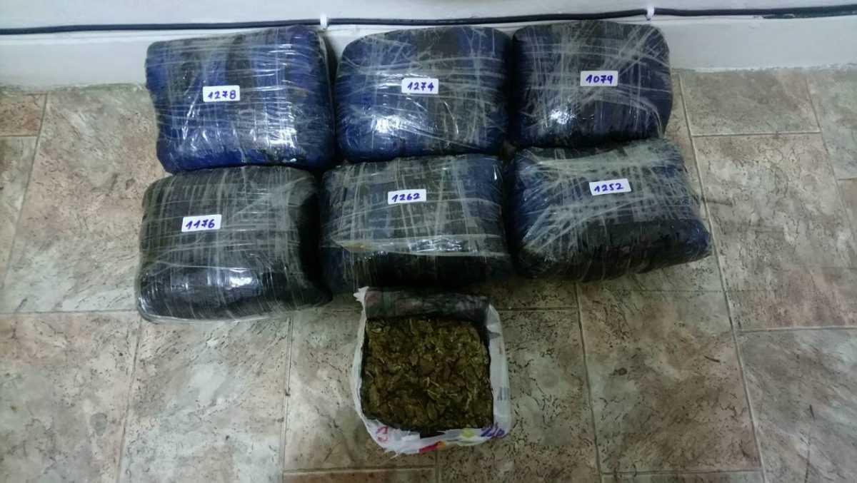 Μετέφερε σακίδιο με 8 κιλά κάνναβη στο εσωτερικό της χώρας μας, με σκοπό τη διακίνησή τους. Συνελήφθη 37χρονος Αλβανός υπήκκοος σε δασική περιοχή της Φλώρινας