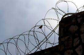 Συνελήφθη στην Κρυσταλλοπηγή Φλώρινας 42χρονος δραπέτης φυλακών  υπήκοος Αλβανίας