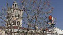 Κλάδεμα εκατοντάδων δέντρων στην Κοζάνη και τις Τοπικές Κοινότητες. Η καθημερινότητα στο επίκεντρο στο Δήμο Κοζάνης