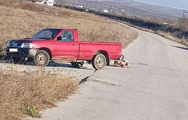 30.000 ευρώ πρόστιμο σε 75χρονο που έσερνε σκύλο με το αγροτικό του