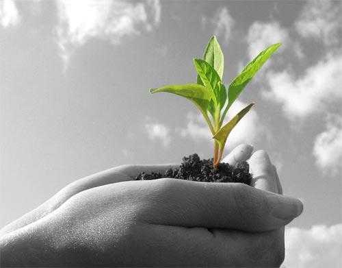 Παράταση ημερομηνίας υποβολής των αιτήσεων στήριξης  στο Μέτρο της Συνεργασίας (Μέτρο 16) του Προγράμματος Αγροτικής Ανάπτυξης 2014-2020 μέχρι τις 22/10/2018