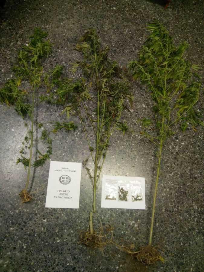 45χρονος στην Πτολεμαϊδα και καλλιεργούσε και κατείχε ναρκωτικά, αλλά και αρχαία αντικείμενα