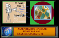 ΑΛΛΕΡΓΙΕΣ ΠΟΥ ΠΡΟΚΑΛΕΙ Η ΜΟΥΧΛΑ (VIDEO ) (Μάρθα Στ.Καπλάνογλου Τεχνολόγος - Γεωπόνος)