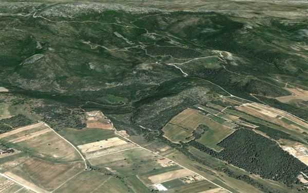 Υποβολή στοιχείων και εγγράφων ατομικών διοικητικών πράξεων για την αυτεπάγγελτη αναμόρφωση και κατάρτιση των δασικών χαρτών από τις Διευθύνσεις Δασών της Αποκεντρωμένης Διοίκησης Ηπείρου-Δυτικής Μακεδονίας