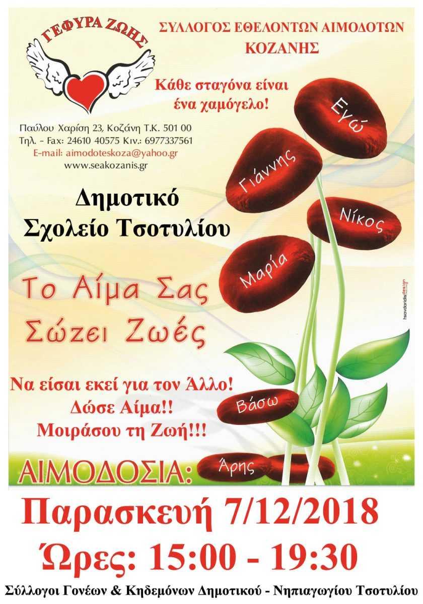 Ο Σ.Ε.Α. Κοζάνης πραγματοποιεί την 37η Αιμοδοσία στο Τσοτύλι. «Να είσαι εκεί για τον άλλο. Δώσε Αίμα. Μοιράσου τη Ζωή»