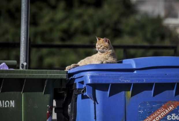 Μειωµένα τέληακόµα και άνω του 25% θα πληρώνουν οιδηµότες των δήµων που εµφανίζουν ισχυρές επιδόσεις στην ανακύκλωση. Ο Δήμος Κοζάνης είναι ο μόνος Δήμος που κάνει ανακύκλωση στο σπίτι με χρήση στατόρων συλλογής ΑΥ
