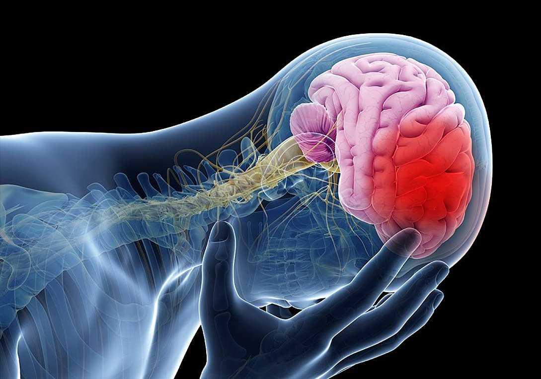 Τα εγκεφαλικά σκοτώνουν 35.000 Έλληνες κάθε χρόνο. Τα συμπτώματα – Η νέα μέθοδος που σώζει ζωές