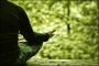 Η ΩΦΕΛΙΜΟΤΗΤΑ ΤΩΝ ΣΤΑΦΥΛΙΩΝ ΜΕ ΣΠΕΡΜΑΤΑ (ΓΙΓΑΡΤΑ ) & ΟΙ ΑΝΤΙΣΤΟIΧΕΣ ΠΟΙΚΙΛΙΕΣ (Video). Μάρθας Στ. Καπλάνογλου Γεωπόνου -Τεχνολόγου