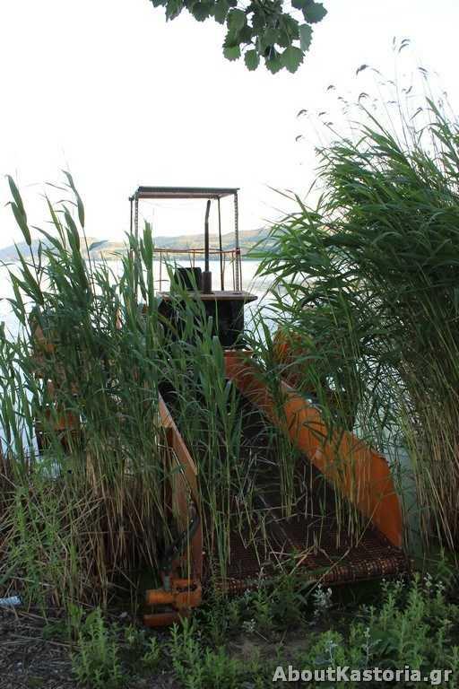 «Φύτρωσε» το μηχάνημα καθαρισμού της λίμνης – Εικόνες για γέλια και για κλάματα