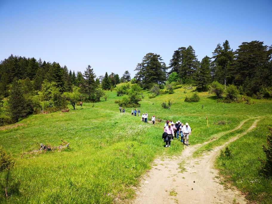 Στις 11 ξεκινούν πλέον οι κυριακάτικες ξεναγήσεις στο Πάρκο Εθνικής Συμφιλίωσης