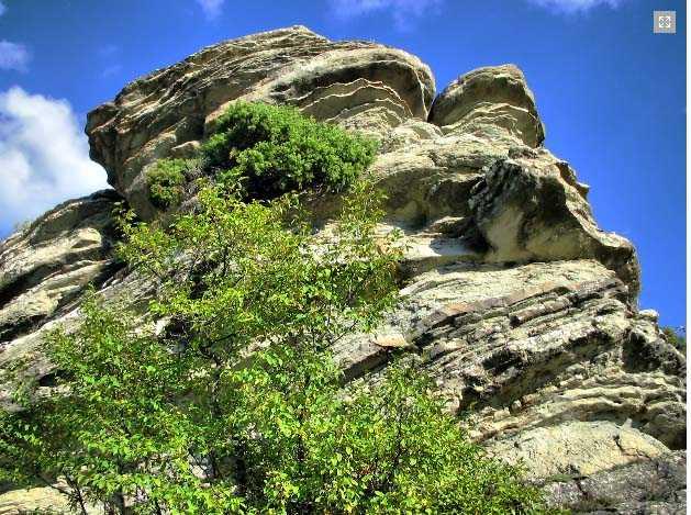 Η Ιδιαίτερη Γεωλογία του Δυτικού Βοΐου – Σπάνια Απολιθώματα