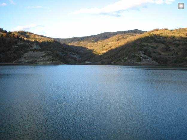 Διεξαγωγή αθλητικού αγώνα αλιείας κυπρίνου  στην τεχνητή λίμνη Πολυφύτου