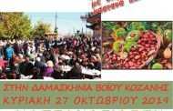 27 Οκτωβρίου η ΚΑΣΤΑΝΟΓΙΟΡΤΗ στη Δαμασκηνιά Βοϊου