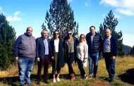Η γνωστή εταιρία KORRES, ενέταξε στον κατάλογο της παραγωγής της και νέα προϊόντα με βασικό συστατικό εκχύλισμα από Μαύρη Πεύκη και από Λευκόδερμη Πεύκη (γνωστή σε εμάς ως Ρόμπολο) υλικά που προέρχονται από τα δάση των Γρεβενών.