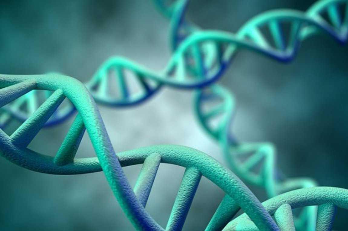 E. Δερμιτζάκης για κορωνοϊό: Το γενετικό υπόβαθρο μπορεί να ευθύνεται για την σοβαρότητα της νόσου