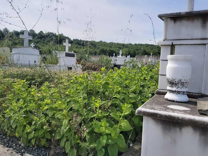 Έκκληση του Δήμου Γρεβενών για τον άμεσο καθαρισμό των μνημάτων  στο Δημοτικό Κοιμητήριο