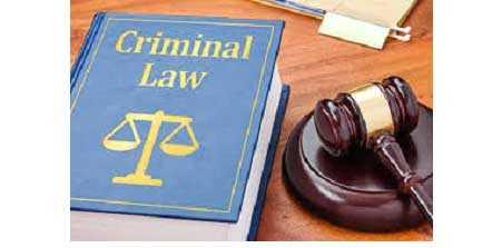 Η διάκριση μεταξύ της εγκληματικής παραλλαγής και του ιδιώνυμου εγκλήματος.