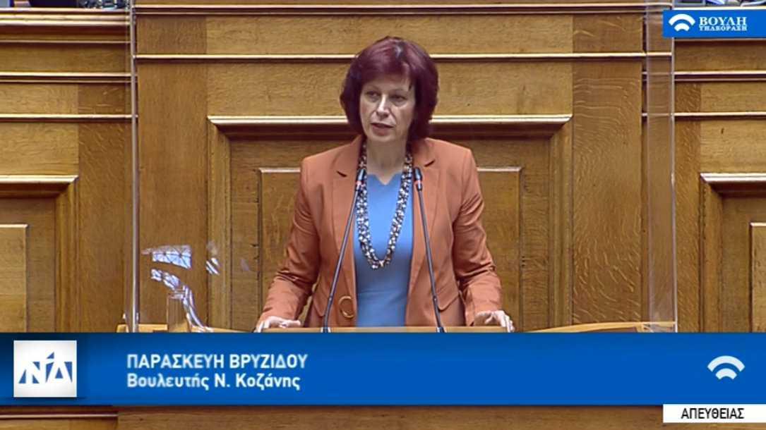Ομιλία στην ολομέλεια της Βουλής από την Παρασκευή Βρυζίδου Βουλευτή, για την ψήφιση του νομοσχεδίου του Υπουργείου Περιβάλλοντος και Ενέργειας με θέμα: