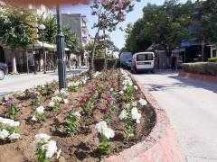 Παρεμβάσεις αναβάθμισης και καλλωπισμού πάρκων και παρτεριών στην Πτολεμαΐδα από το Δήμο Εορδαίας.