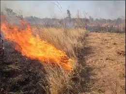 Καύση αγροτικών εκτάσεων – υπολειμμάτων καλλιεργειών (καλαμιάς)