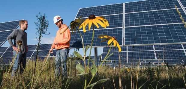 Ενοίκια στα 250 ευρώ για ένα στρέμμα αγροτικής γης φέρνει το δεύτερο επενδυτικό κύμα για φωτοβολταϊκά