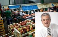 300.000,00 € για τον εκσυγχρονισμό των Εγκαταστάσεων του ΑΣΟ Βελβεντού «Η ΔΗΜΗΤΡΑ»