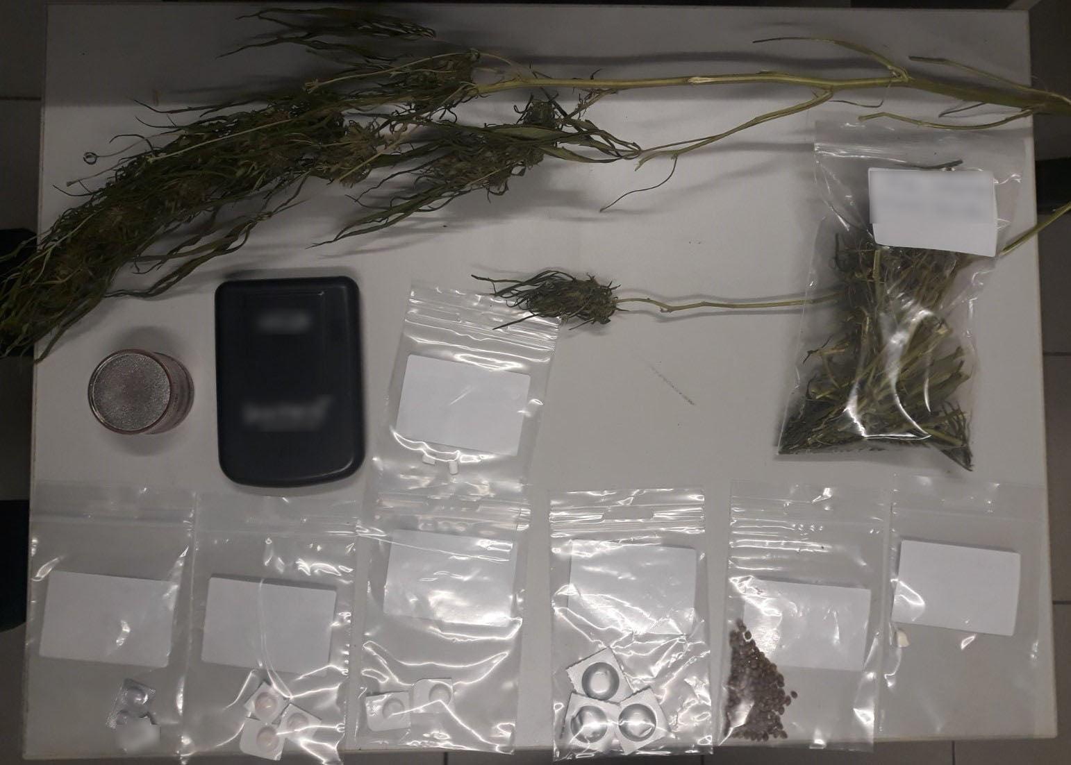 50χρονος και 43χρονη συνελήφθησαν στη Φλώρινα για καλλιέργεια και κατοχή ναρκωτικών ουσιών
