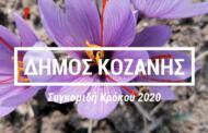 Αφιέρωμα στον Κρόκο Κοζάνης -Το χρυσάφι της ελληνικής γης μετατρέπεται σε καθημερινή ευεργετική συνήθεια
