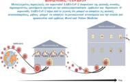 Μεταλλαγμένες παραλλαγές του κορωνοϊού SARS-CoV-2 διαφεύγουν της φυσικής ανοσίας, δημιουργώντας ερωτήματα σχετικά με την αποτελεσματικότητα  εμβολίων και  θεραπειών. Κ. Τριανταφυλλίδης (Γενετιστής - Καθηγητής στην εταιρεία Α.Π.Θ)
